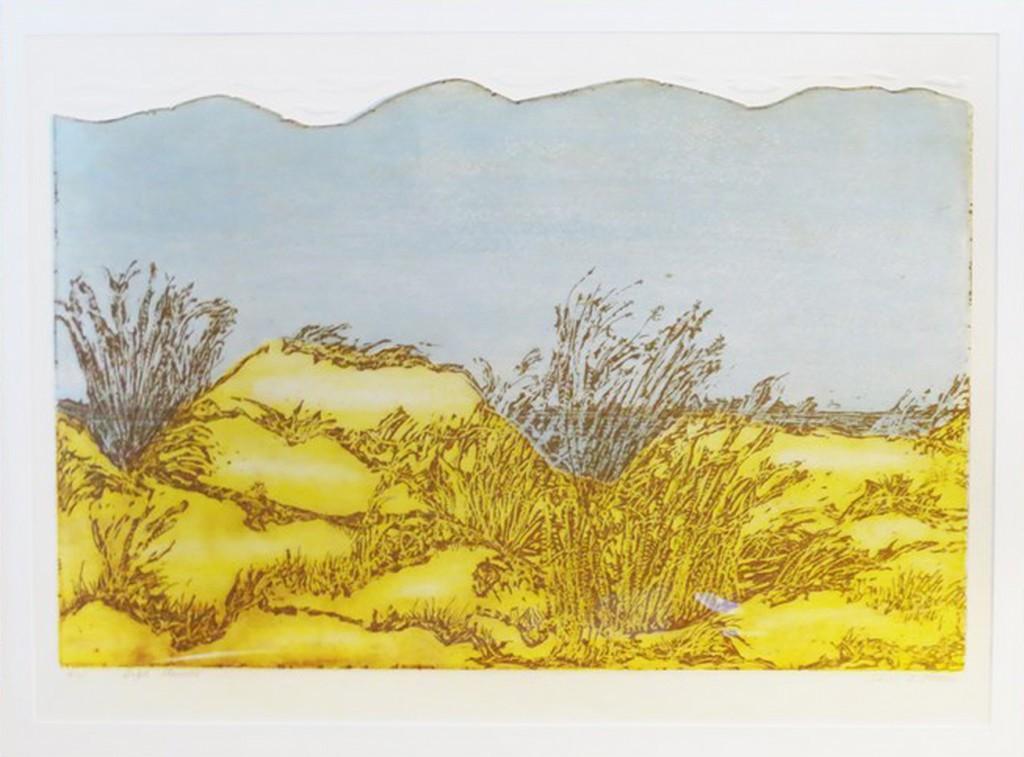 green-shirley-high-dunes